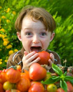 gardening-www.grandparentscafe.com