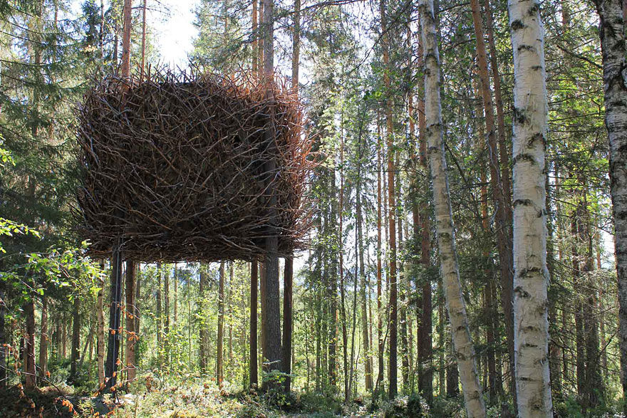 th-birdsnest-Sweden-boredpanda.com