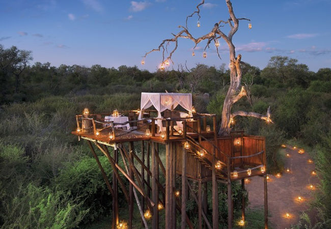 th-HoneymoonTH-KrugerNatlPark-SouthAfrica-theknot.com