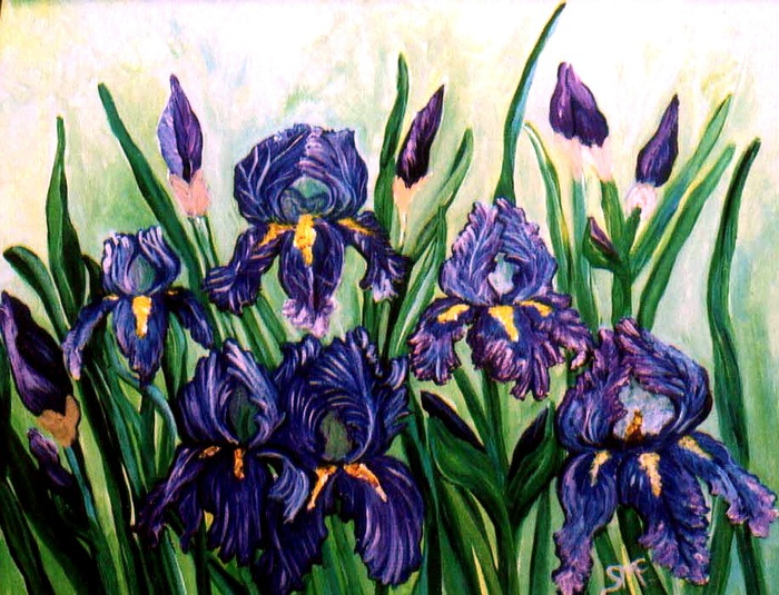 """Iris"" 5x7 matted print by Sherry Dell'aria McGrath"
