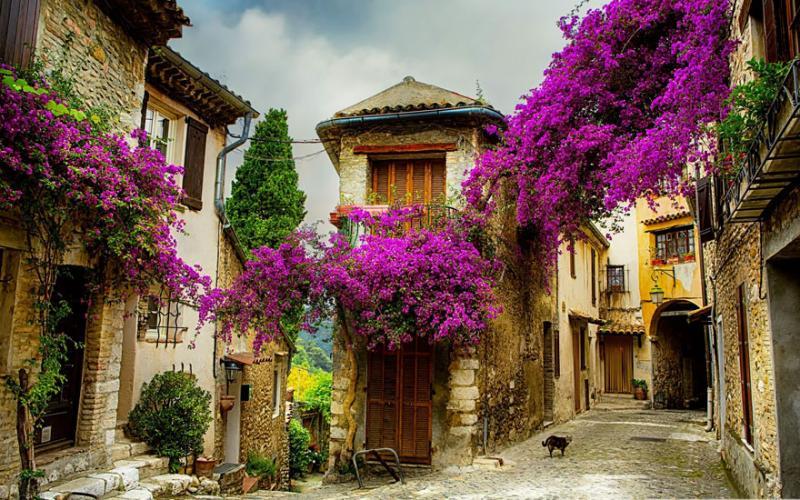 Cagnes-sur-Mer-Provence, France via Hotel plan