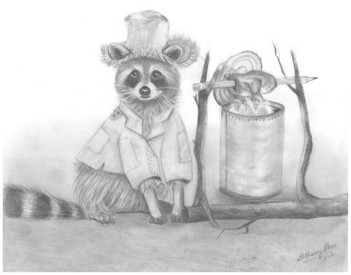 b-raccoon