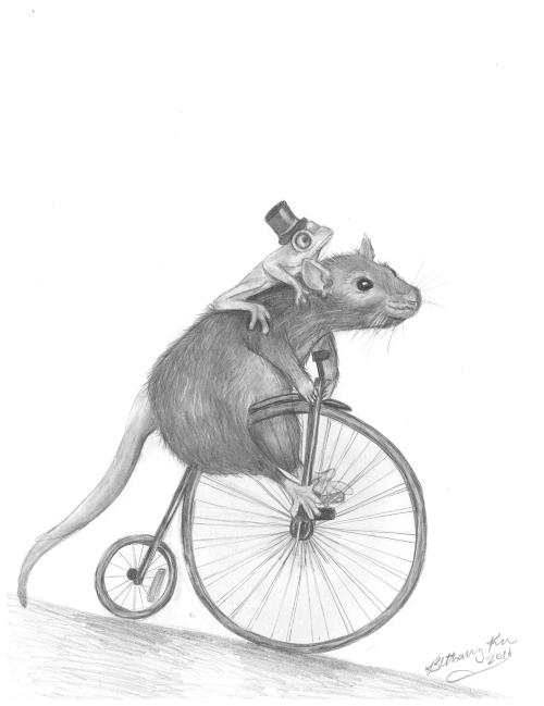 b-ratfrog