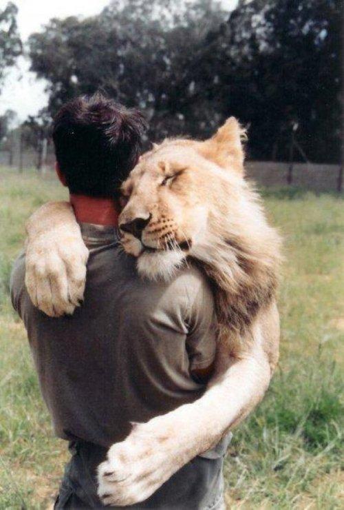 hug13