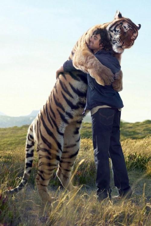 hug17