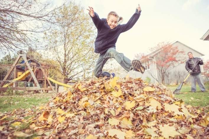 leaves-safebee