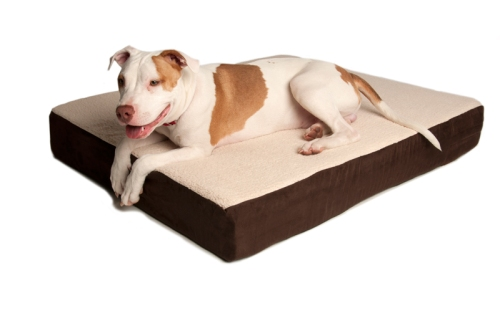 Orthopedic Bed - SerenityHealth.com - 3 Shades of Dog