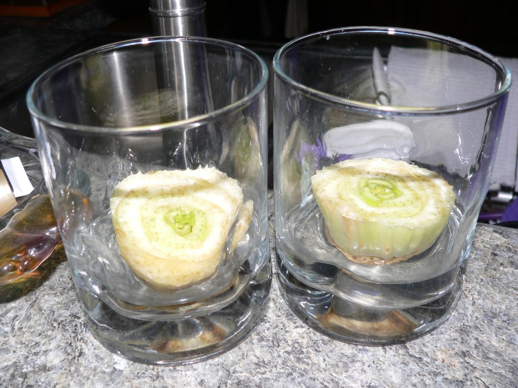 celery-new