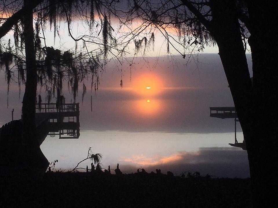 """Lake Waccamaw, North Carolina - Lisa Bearnes Richey"
