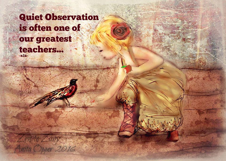 quiet-observation-anitaopper-zentozany-viacathyruggiero.jpg