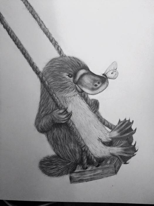 swingingplatypus