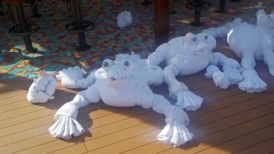 towel-carnivalsunshine