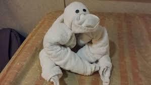 towel-julianfrost