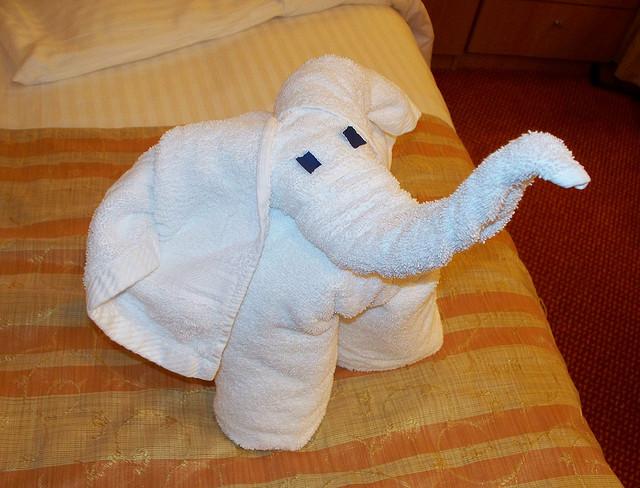 towel-kuriositas