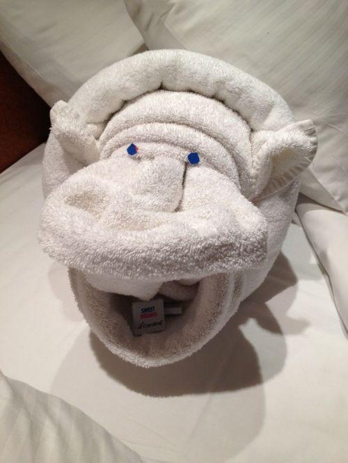 towel-pinterest