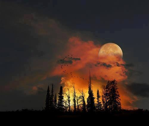 """Moonrise CO"" via Earth Porn via Cathy Ruggiero"