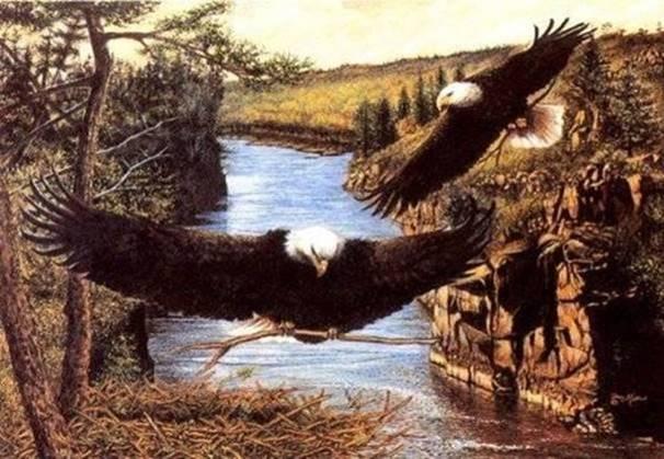 cr21-eagle