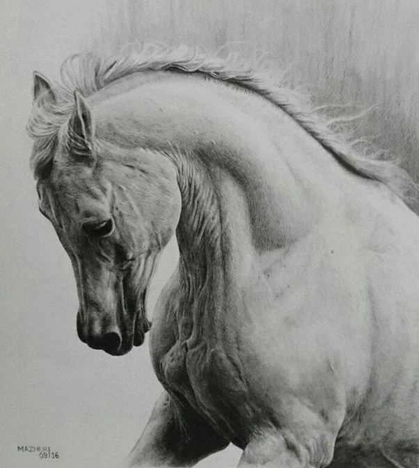 Pencil sketches take 5